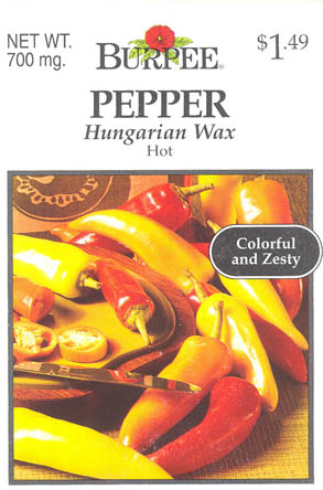 Chilipeber, Hungarian Hot Wax, Capsicum annuum </i>L.<i>